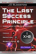 the last success principle cover