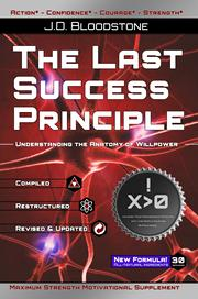 the last success principle front cover