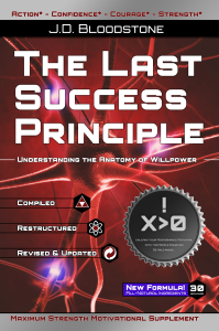 Read more about the article PREVIEW:  The Last Success Principle by J.D. Bloodstone