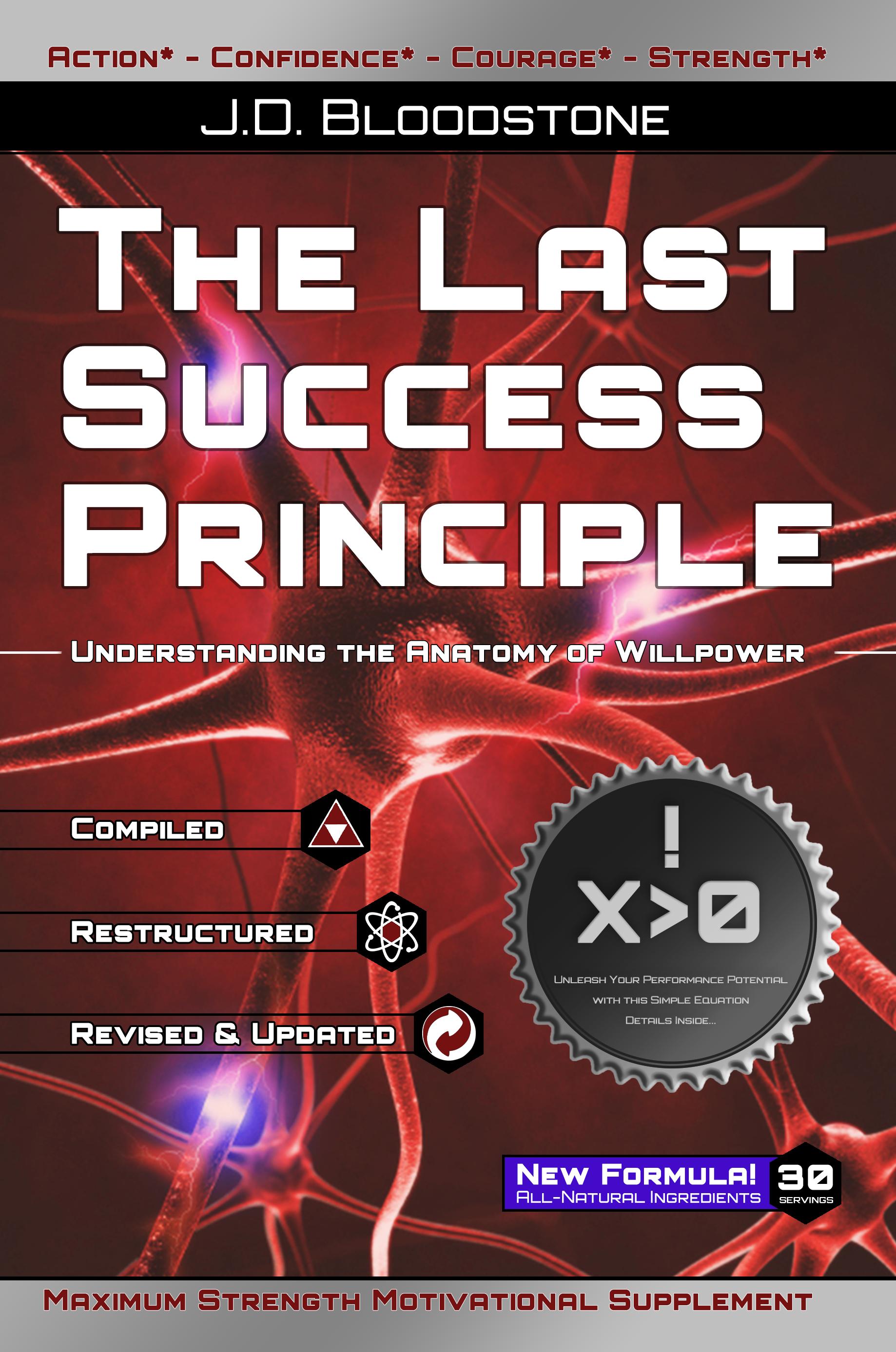 PREVIEW:  The Last Success Principle by J.D. Bloodstone